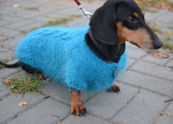 Buy Dachshund Sweater