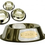 engraved stainless steel bowl