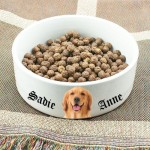Photo and text dog bowl