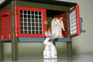 how to build a rabbit cage
