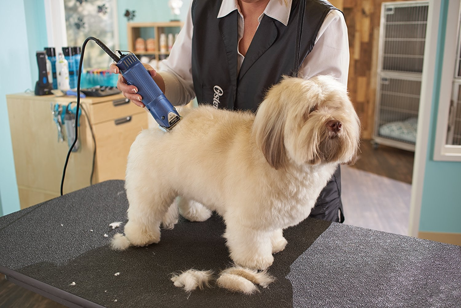 Dog Grooming Clippers For Poodles