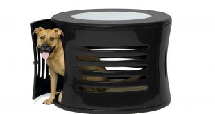 furniture for dogs